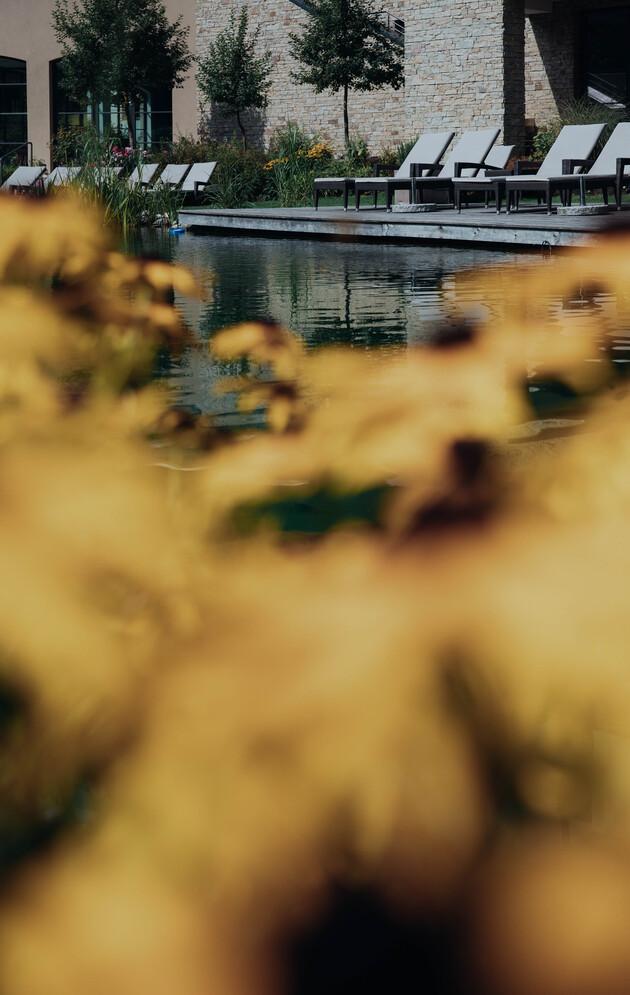 Großzügiger Garten mit Naturschwimmteich und gemütlichen Liegen im 4*S Wellnesshotel Nesslerhof in Großarl, Salzburger Land