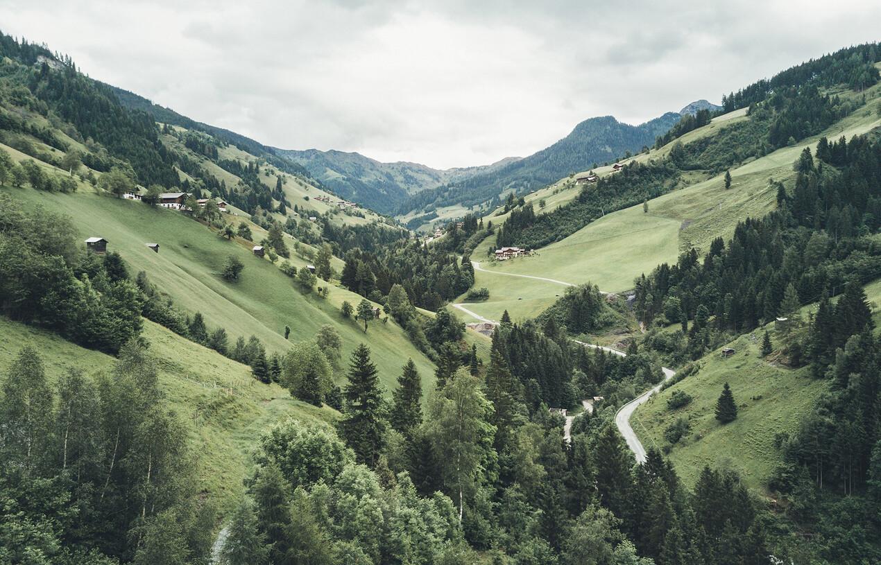 Berglandschaft im Sommer, 4*S Hotel Nesslerhof im Salzburger Land